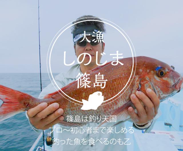 天国 篠島 釣り エクレアの釣り日誌:篠島メバリング&アジング